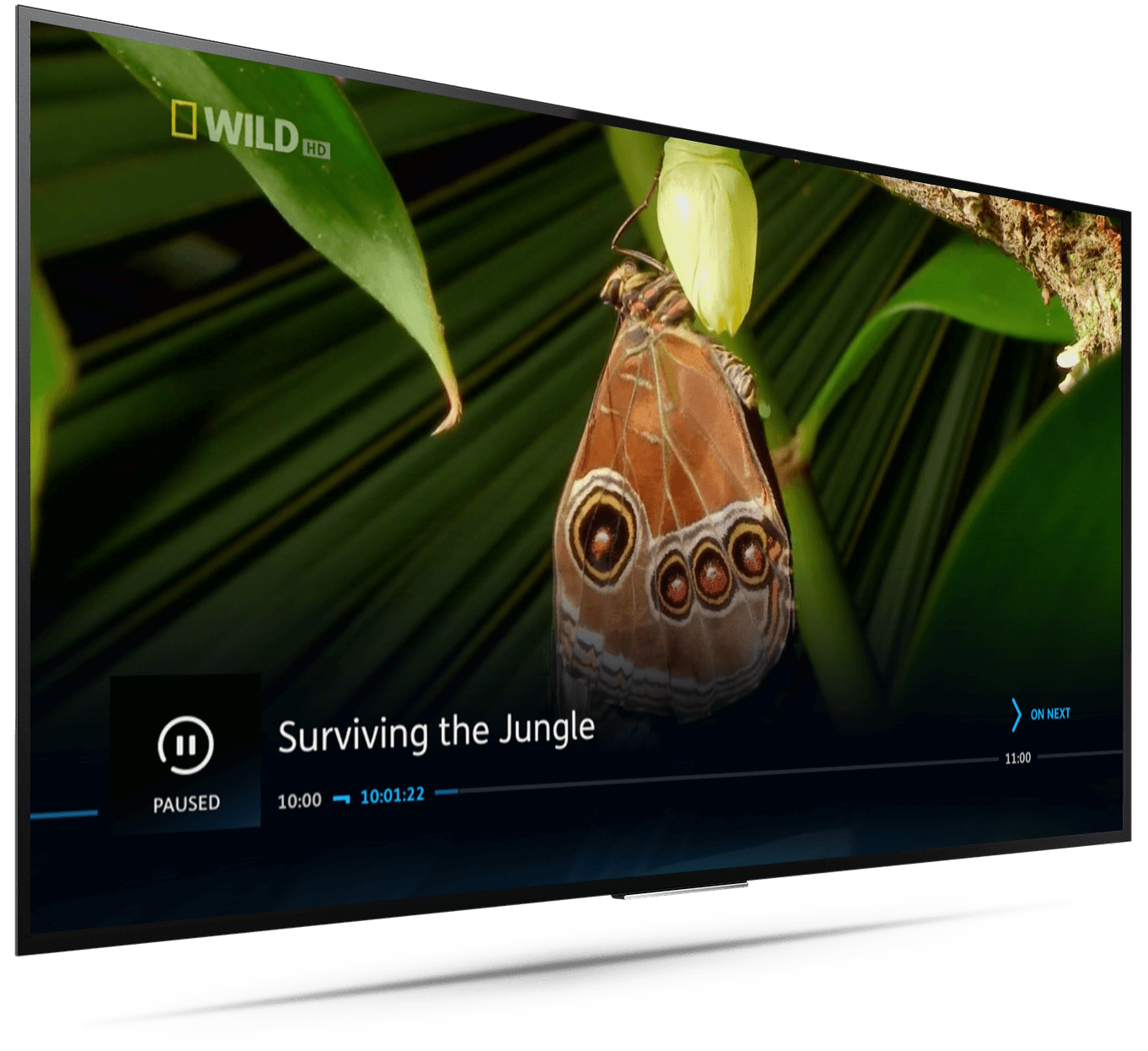 sony tv with youview. youview on sony tv tv with youview e